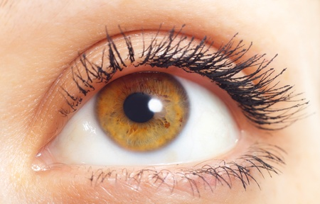 Woman eye with long eyelashes closeup Stock Photo - 8992846
