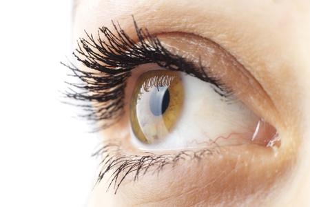 Woman eye with long eyelashes closeup Stock Photo - 8992839