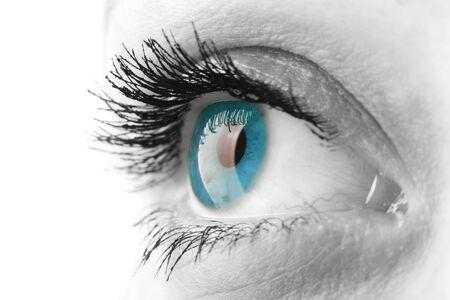 Woman eye with long eyelashes closeup Stock Photo - 8992850