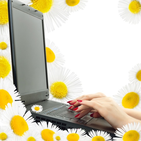 womans hands with a notebook on the background of daisies photo