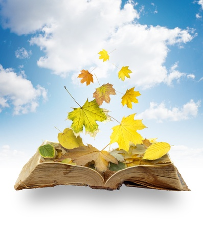 Collage of falling leaves on a book in the sky photo