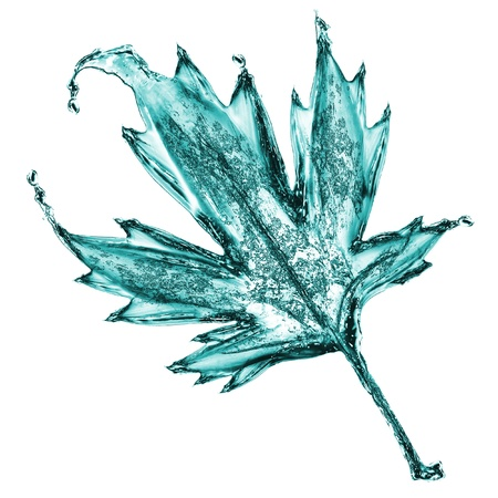 made of water: Maple leaf made of burst water Stock Photo
