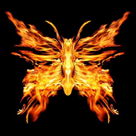 Fiery butterfly on a black background Foto de archivo