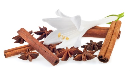 vanilla: aromatic spices on a white background Stock Photo
