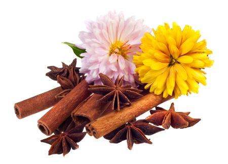 especias aromáticas sobre un fondo blanco