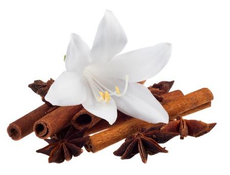 flor de vainilla: especias aromáticas sobre un fondo blanco