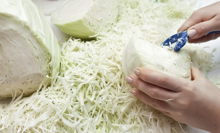 shreds: Food. Shreds cabbage for making