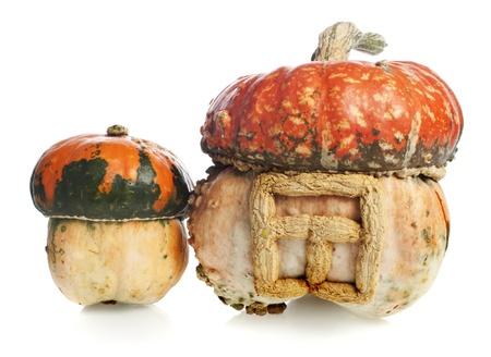 decorative pumpkins on white background photo
