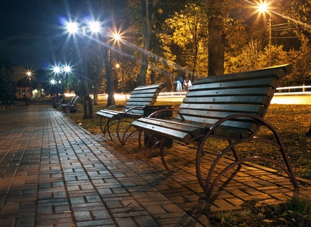 The avenue of city park is shown at night photo