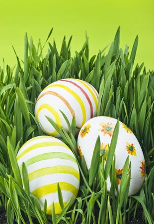 Easter eggs in Fresh Green Grass Stock Photo - 12364046
