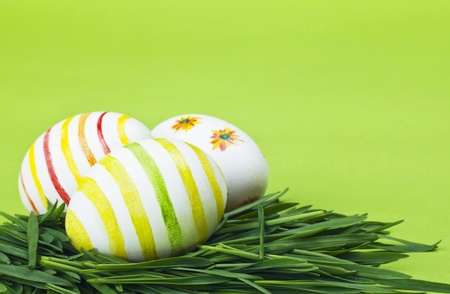 Easter eggs in Fresh Green Grass  photo