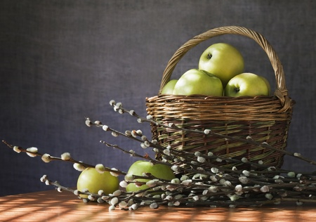 Still. The morning sun lights up a basket of apples photo