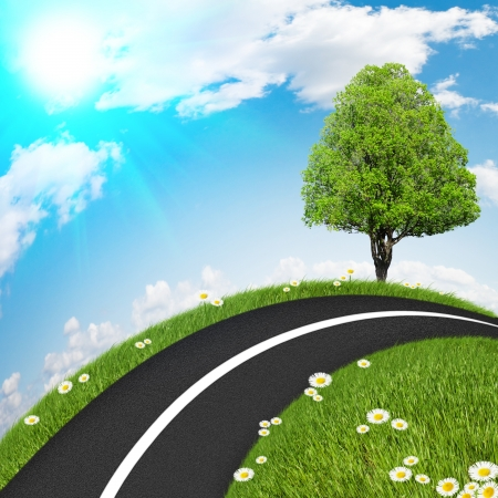 Asphalt road with a tree, grass and clear skies photo