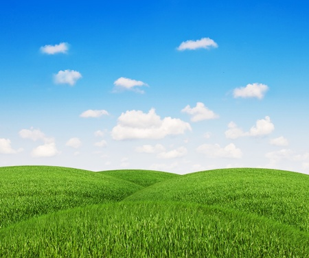 mounds of grass with a clear sky photo