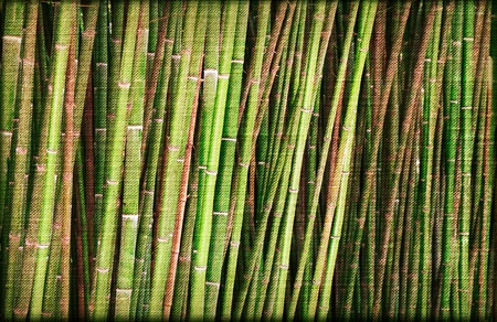 oriental bamboo paper for your design photo