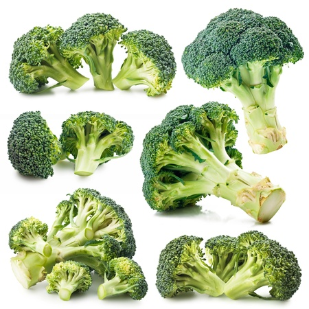 collection of photos of broccoli on a white background photo