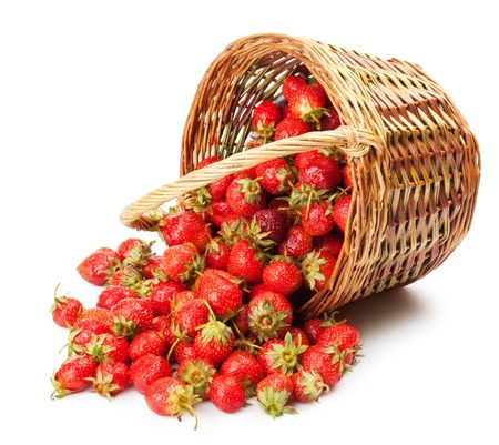 fresh strawberries in a basket on a white background photo