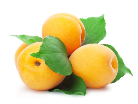 Apricots with leaves on a white background photo