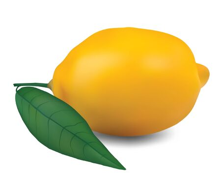 fruited: Lemon with leaf on a white background