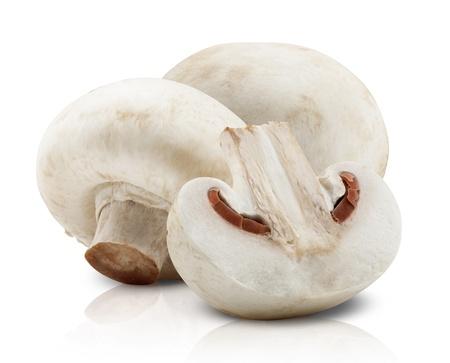 champignon: Champignon mushrooms on white backround. Stock Photo