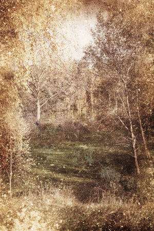clawing: Texture vintage landscape clearing trees Stock Photo