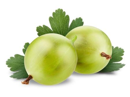 grosella: Primer plano de grosella verde con hojas aisladas en blanco