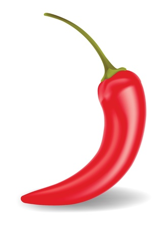 organic peppers sign: Vector Chili Pepper. Food Collection