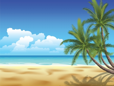 palmtree: Palms on empty idyllic tropical sand beach. Image contains gradient mesh Illustration