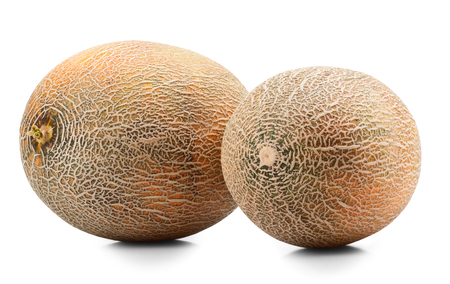Ripe melons on white background photo