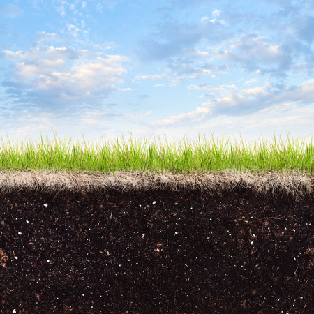 subterranean: Soil, grass and sky  Stock Photo