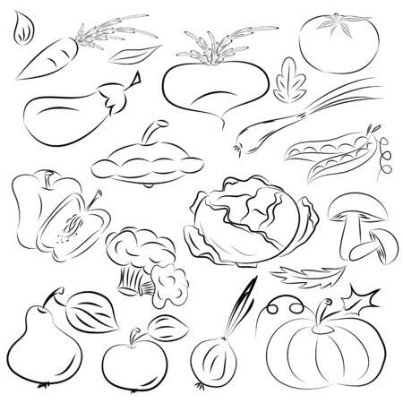 vector illustration of fruits and vegetables collection in black and white  Vector