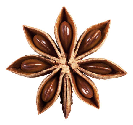 anisetree: Star anise isolated on white background. Clipping Path