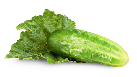 cuke: fresh cucumber isolated on white background. Clipping Path