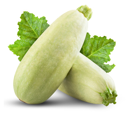 gourds: Fresh vegetable marrow isolated on white background. Clipping Path