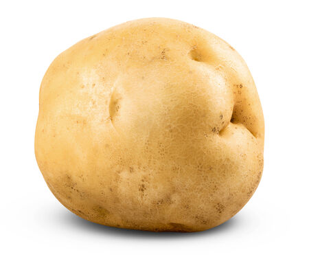 potato isolated on a white background close up. Clipping Path photo