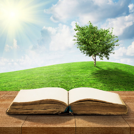 Open book on wooden table over beautiful meadow and sky photo