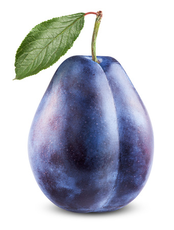 Fresh plum isolated on a white background. Clipping Path photo