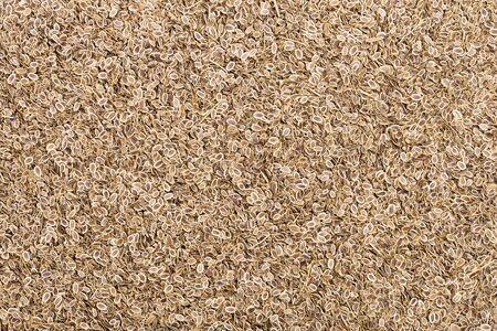 fennel seeds: background of fennel seeds for your design
