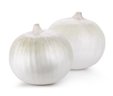 cebolla blanca: Onion isolated on white background. Clipping Path Foto de archivo