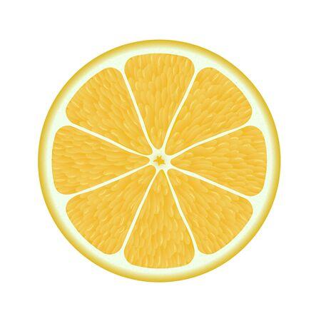 Fresh lemon isolated on a white background. Photorealistic Vector
