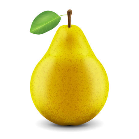 Vector realistic fresh pear on a white background
