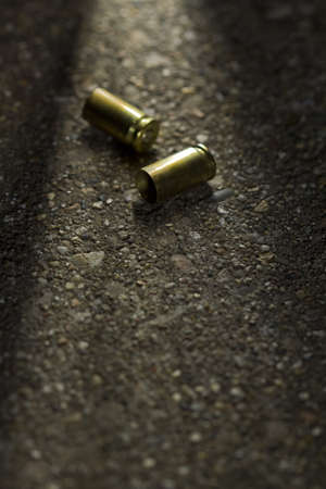 casings: Two bullet casings