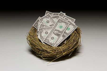 Dollar bills in nest egg, horizontal Stock Photo - 21096229