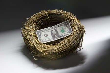 One dollar bill inside a bird s nest, horizontal Stock Photo - 21096232
