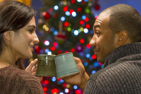 Romantic couple toasting in front of Christmas tree, horizontal photo