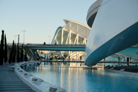 The Arts Palace and Science Museum of Valencias City of Arts and Sciences Editorial