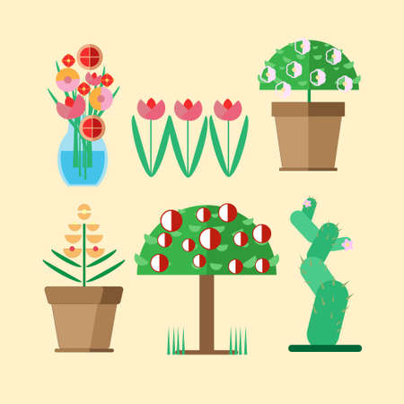 florescence: six kinds of home-cultivated plants growing in pots in a vase or in the garden