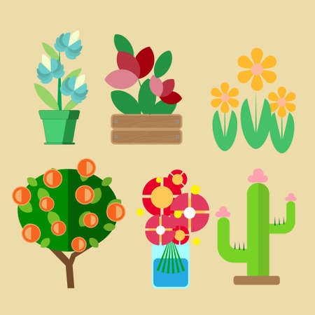 six kinds of home-cultivated plants growing in pots in a vase or in the garden