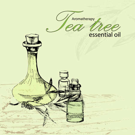 masseuse: vector illustration of essential oil of tea tree in the style of hand drawn