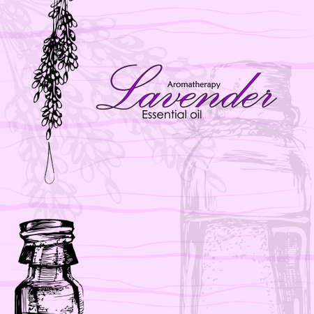 masseuse: vector illustration of essential oil of lavender in the style of hand drawn Illustration